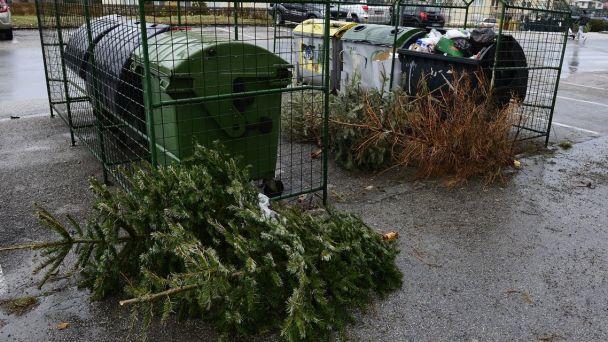 Vývoz vianočných stromčekov, zatvorené zberové dvory